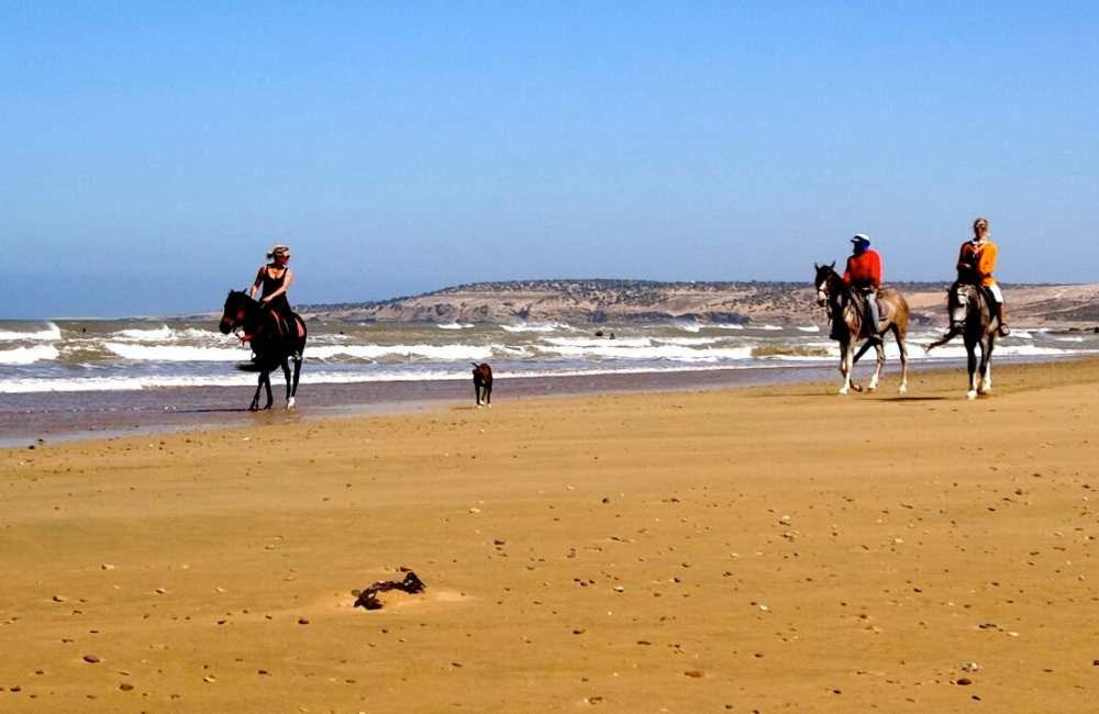 horse riding sidi kaouki