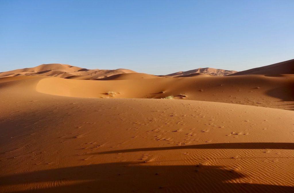 marrakech excursion to sahara desert