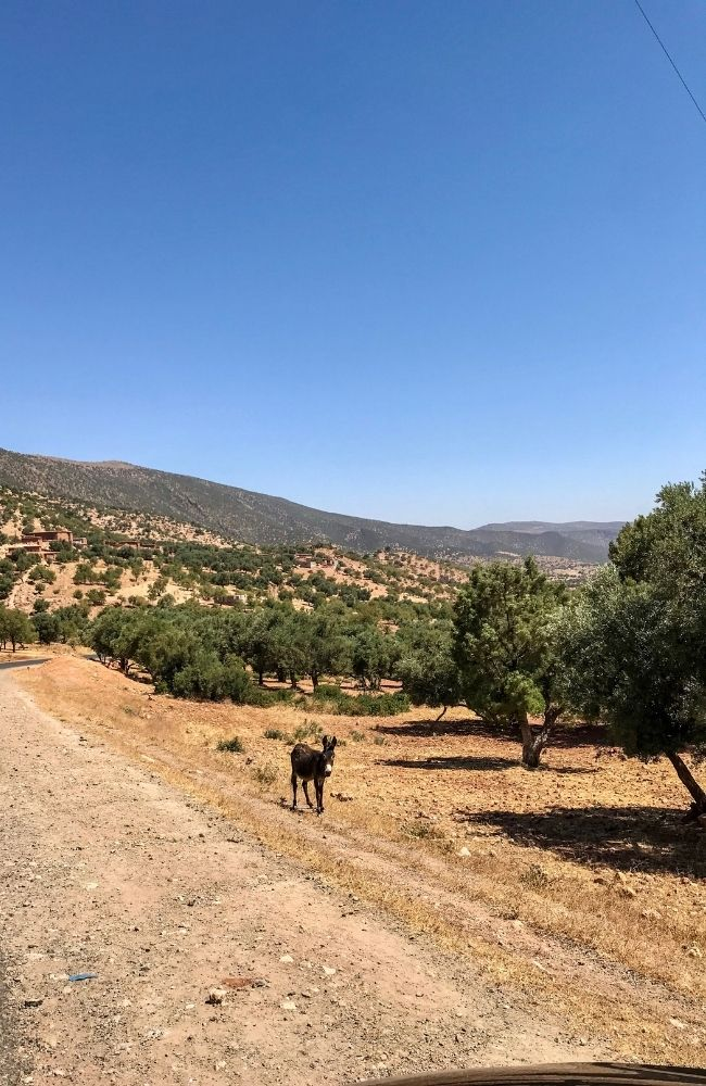 countryside route ouzoud